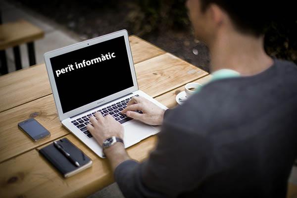 Perit informàtic laboral